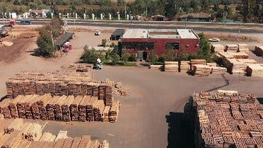 Producing Pallets for the Wine Industry in Chile